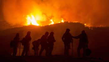 forest-fire-3694491_1280