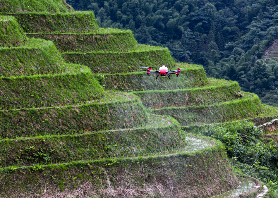 XAG introduces rice seeding drone to mitigate labour shortage