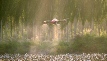 XAG-Drone-Spraying-Cotton-Defoliate