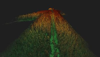 LiDAR point cloud image of trees on overhead power lines (Hepta pilot project in Finland)